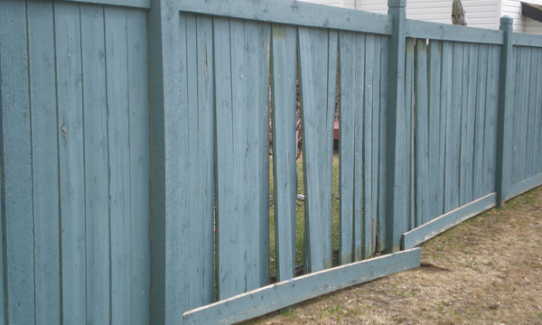{Fence Stain Info}